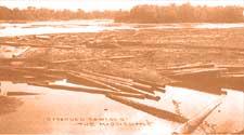 logging on river
