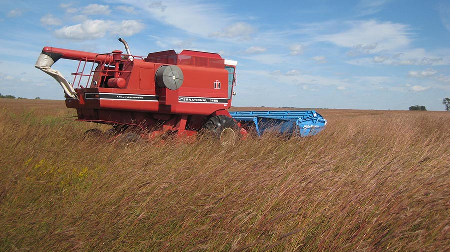 A combine collects seed from remnant prairie plants. The seed is used locally to restore and enhance native habitats in the Appleton area.