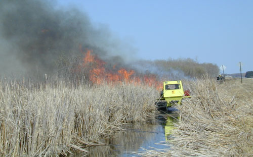 A Baudette wildlife crew manages a prescribed burn.