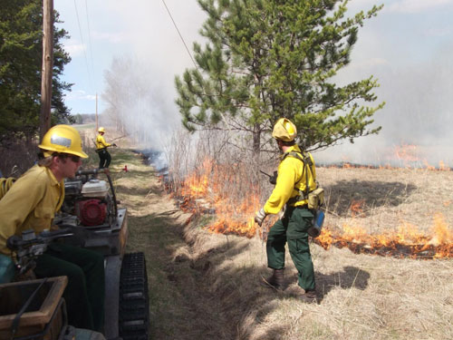 A prescribed burn in the Brainerd wildlife work area.