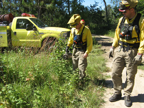 Maintaining habitat in the Park Rapids area.