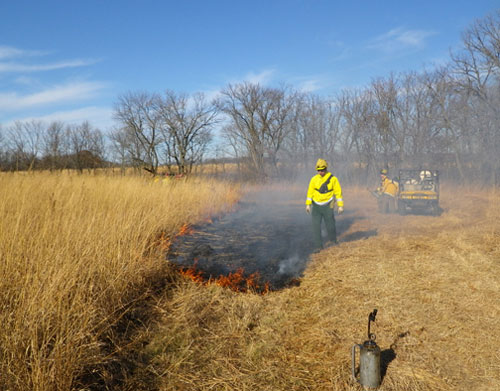 A prescribed burn to benefit habitat in the Shakopee wildlife work area.