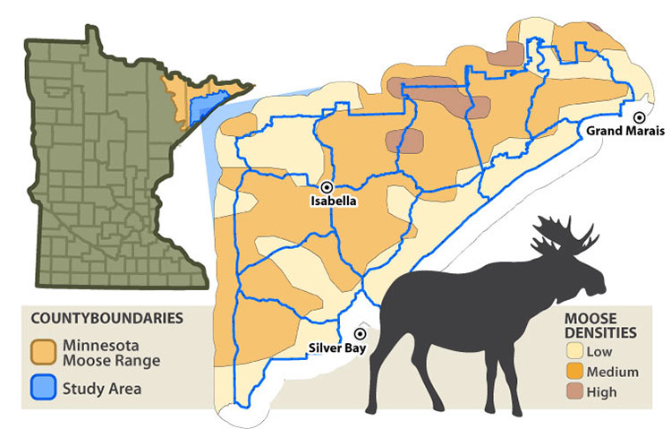 Map of moose project study area in northeastern Minnesota.