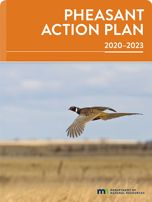 Cover from the published version of the current Pheasant Action Plan