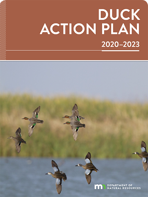 Cover from the published version of the current Duck Action Plan