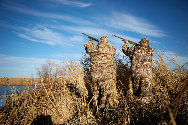 Waterfowl hunters waiting for ducks to come in range